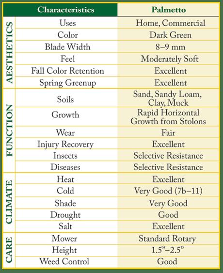 Palmetto Characteristics