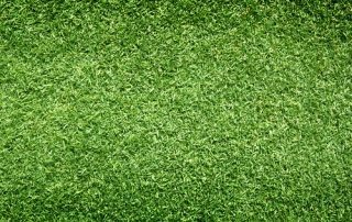 What are the Benefits of Using Empire Turf® in South Carolina?